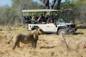 Safari à Banoka Bush Camp