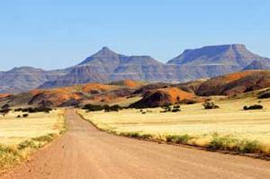 Piste dans la région du Namib